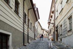 De architectuur van Bratislava Royalty-vrije Stock Afbeeldingen