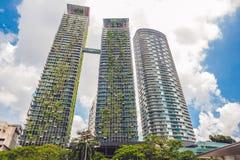 De Architectuur van Eco De groene wolkenkrabberbouw met installaties die op de voorgevel groeien Ecologie en het groene leven in  Stock Afbeelding