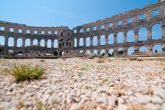 De arena van Colosseum Royalty-vrije Stock Fotografie