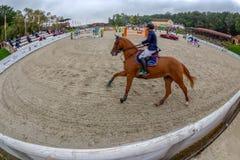 De arena voor de concurrentie bij toont het springen Royalty-vrije Stock Fotografie
