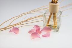 De aromatische stokken met lichtrose namen en droge houten stok toe Stock Afbeelding