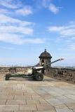 De artilleriekanon van de houwitser Stock Afbeelding