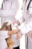 De arts geeft eerste hulp van kind. Stock Foto