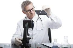 De arts kijkt en analyseert bloedonderzoekbuis stock afbeeldingen
