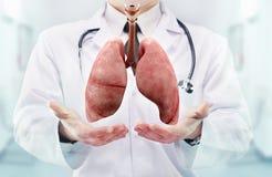 De arts met stethoscoop en longen op dient het ziekenhuis in royalty-vrije stock foto