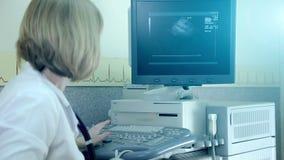 De arts onderzoekt een geduldig hart van ` s met ultrasone klank Diagnostiek en Ultrasone klankonderzoek van de patiënt stock videobeelden