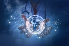 De arts toont een menselijk embryo op de achtergrond van de aarde stock foto