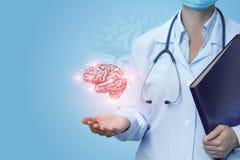 De arts toont de hersenen van een persoon stock afbeeldingen