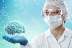 De arts toont de hersenen van een persoon op een blauwe achtergrond Modern medisch en wetenschappelijk concept stock afbeeldingen
