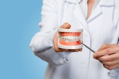 De arts toont het probleem met de gommen op het toothsmodel stock foto's