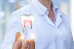 De arts toont tand stock foto