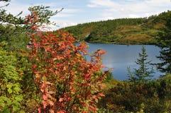 De as van de herfst en bergmeer Royalty-vrije Stock Fotografie