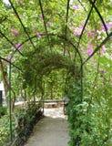De As van de tuin Stock Afbeelding
