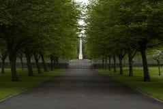 De asfaltweg tussen bomen op de gazons Royalty-vrije Stock Afbeeldingen