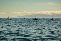 De Atlantische Oceaan van de westkust van Tenerife Vier silhouetten op autopeddenschommeling op een stille golf Het Eiland van La royalty-vrije stock fotografie