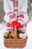 De atmosfeer van de winter Stock Foto
