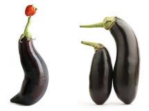 De aubergines tonen Stock Afbeelding