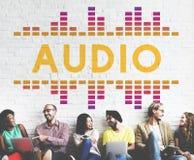 De audio Digitale Equalisermuziek stemt Correcte Golf Grafisch Concept royalty-vrije stock afbeeldingen