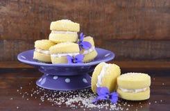 De Australische koekjes van de stijljojo royalty-vrije stock afbeelding