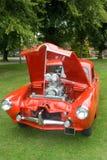De auto van de douane Royalty-vrije Stock Foto's