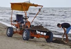 De auto voor huisvuilinzameling van het strand Schoonmakend op het strand, schoon strand van modder en afval stock foto's