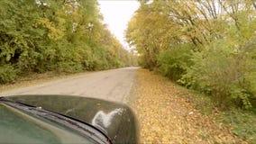 De autoritten door het de herfstbos stock videobeelden