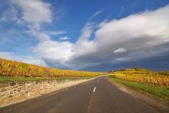 De Autosnelweg van de Route van de wijnstok Royalty-vrije Stock Foto's