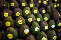 De Avocado van het fruit stock foto