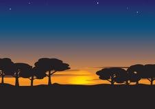 De avond van de zomer Royalty-vrije Stock Afbeelding
