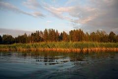 De Avond van de zomer op het meer Stock Fotografie