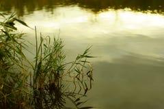 De avondhemel overdenkt het water royalty-vrije stock afbeelding