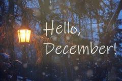 De avondlandschap van de winter Het concept van Hello december Lantaarn in het Park stock foto
