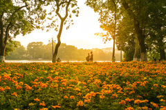 De avondtijd in openbaar park hanoi vietnam Royalty-vrije Stock Foto
