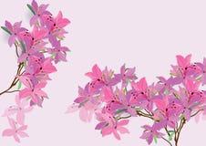 De azalea bloeit het hand getrokken geïsoleerde beeld van de waterverfborstel ontwerp voor voorwerp Stock Afbeeldingen