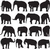 De Aziatische contour van het olifantssilhouet Stock Foto's