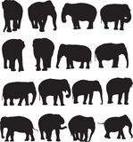 De Aziatische contour van het olifantssilhouet Stock Afbeeldingen