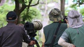 De Aziatische Fotograaf neemt beelden van het wild met DSLR-camera stock videobeelden