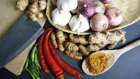 De Aziatische keukenkruiden en de kerrie Stock Fotografie
