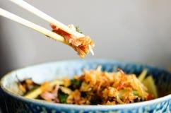 De Aziatische rijst met varkensvlees, mu-vergist zich paddestoelen, napakool, ingelegde bamboespruiten, spinazie, Teriyaki, zoete Stock Afbeeldingen