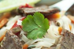 De Aziatische Soep van het Rundvlees Royalty-vrije Stock Afbeeldingen