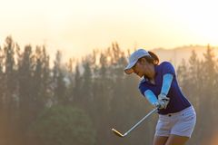 De Aziatische speler die van het vrouwengolf het T-stuk van de golfschommeling weg op de groene tijd van de zonsondergangavond do stock foto