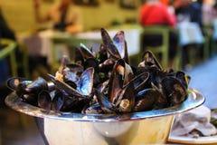 De bästa musslorna i Bryssel royaltyfria bilder