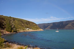De Baai Akaroa Nieuw Zeeland van het Schiereiland van de bank royalty-vrije stock foto's