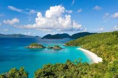 De baai de Caraïben van de boomstam Royalty-vrije Stock Afbeeldingen