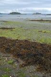 De baai van Brest, Bretagne, Frankrijk Royalty-vrije Stock Foto's