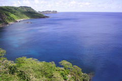 De Baai van de dolfijn Stock Afbeeldingen