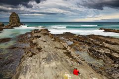 De Baai van de kannibaal, Nieuw Zeeland Stock Foto's