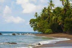 De Baai van de Mannetjeseenden van Costa Rica Royalty-vrije Stock Foto's