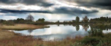 De Baai van de witte vis Royalty-vrije Stock Afbeeldingen