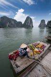 De Baai van Halong, Vietnam Royalty-vrije Stock Foto